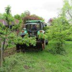 Projekt Wildblumenwiese 10.05.2019_2